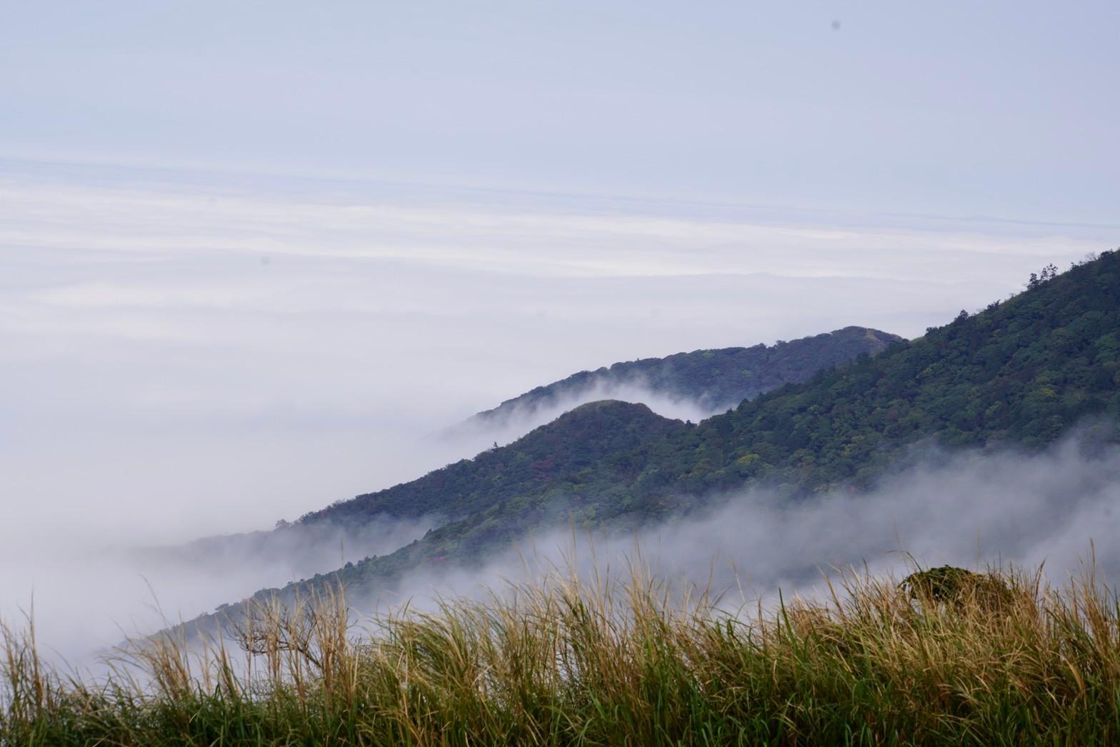 台北大縱走之第一段|從城市走到山裡 雲霧繚繞的山峰景色